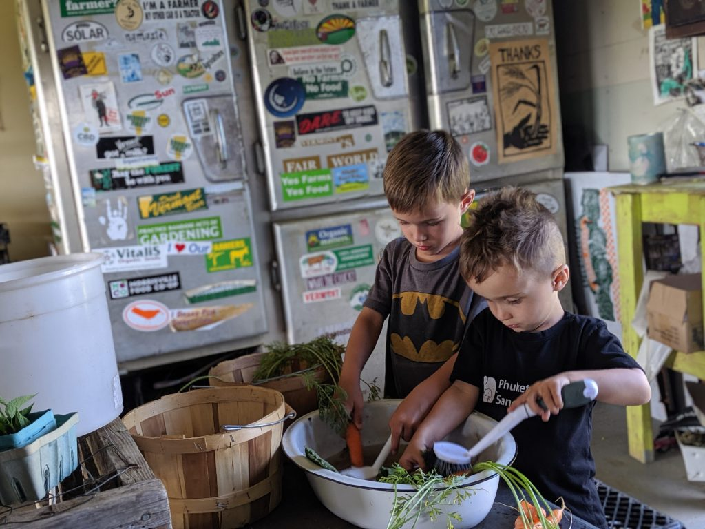 Our boys cleaning their freshly harvested vegetables at Sandiwood Farm in Vermont