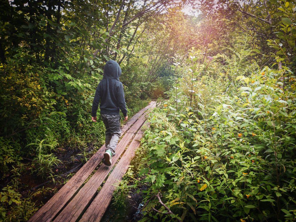 Walking to Moss Glen Falls.